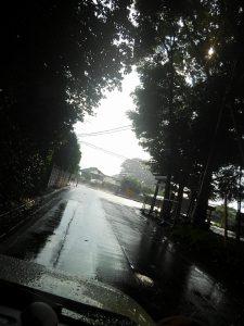 雨上がりの湯気